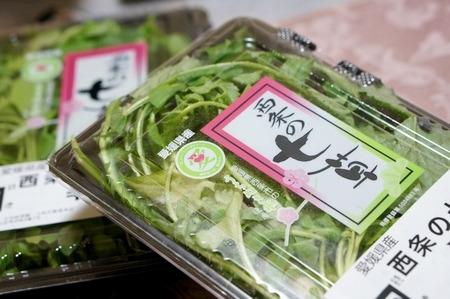 愛媛県西条産の七草