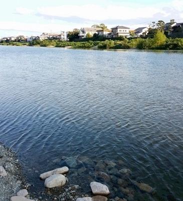 綺麗な水が流れる武庫川