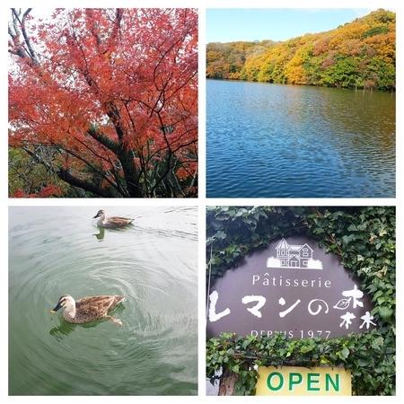 一碧湖とレマンの森