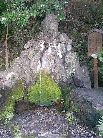亀岡の出雲大神宮の湧き水