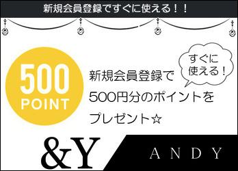 アンドワイ自社サイトの新規会員登録で500ポイント