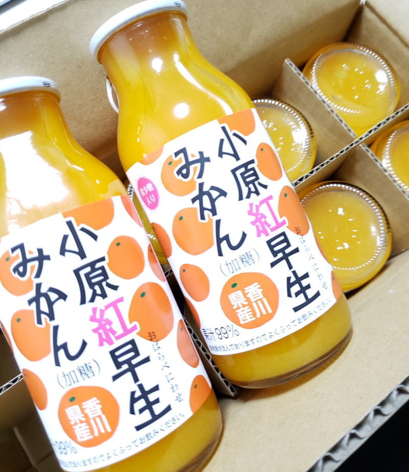マブチモーター株主優待の香川県産みかんジュース