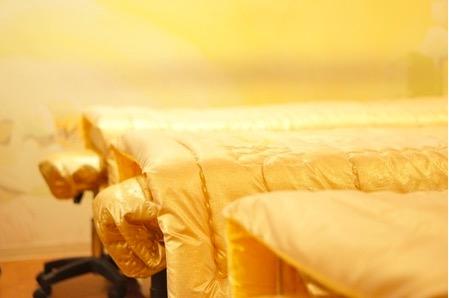 薬手名家の金のベッド