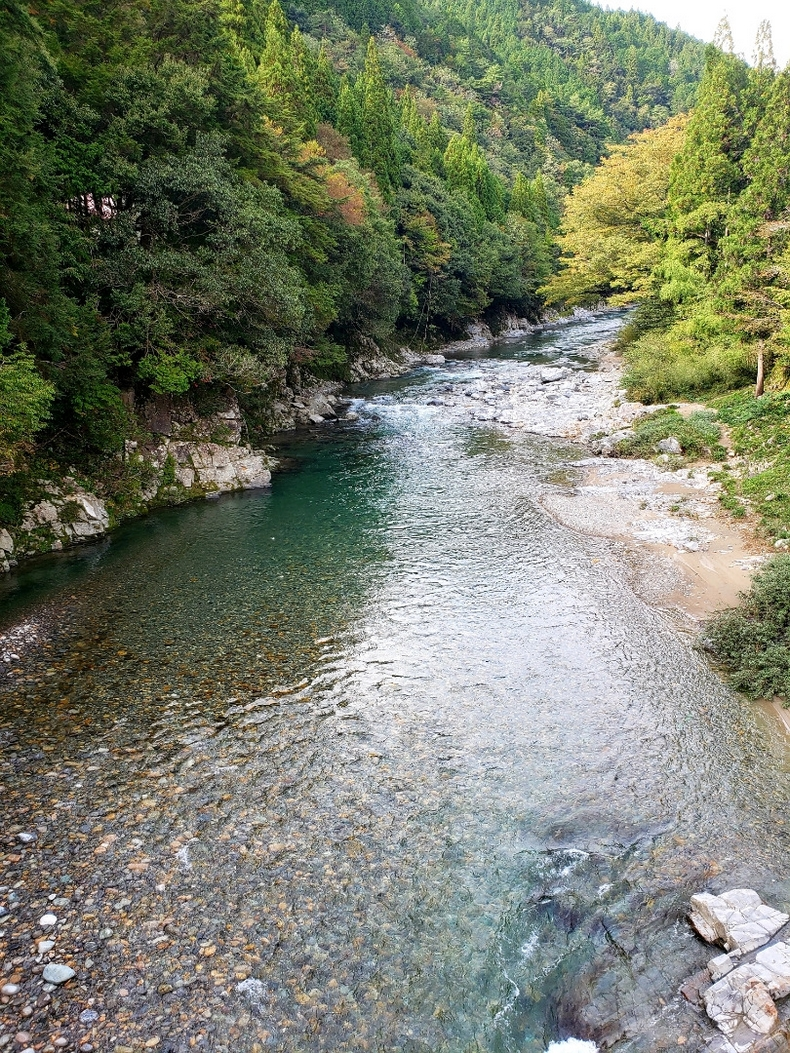 岐阜県の透明度の高い川