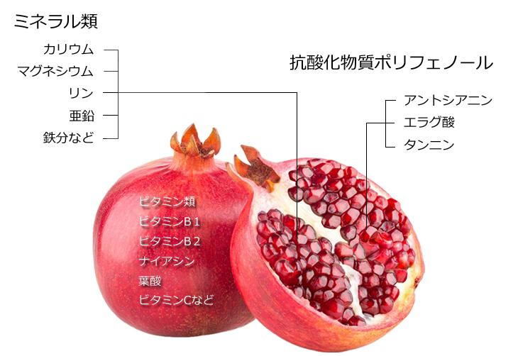 ザクロに含まれる栄養素